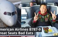 WHAT-A-FLIGHT-American-Airlines-B787-9-Great-Seats-Bad-Eats